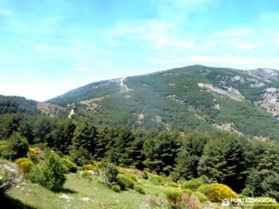 Reserva Natural Valle Iruelas-Pozo de la nieve;bastones trekking parque natural de monfrague rutas d